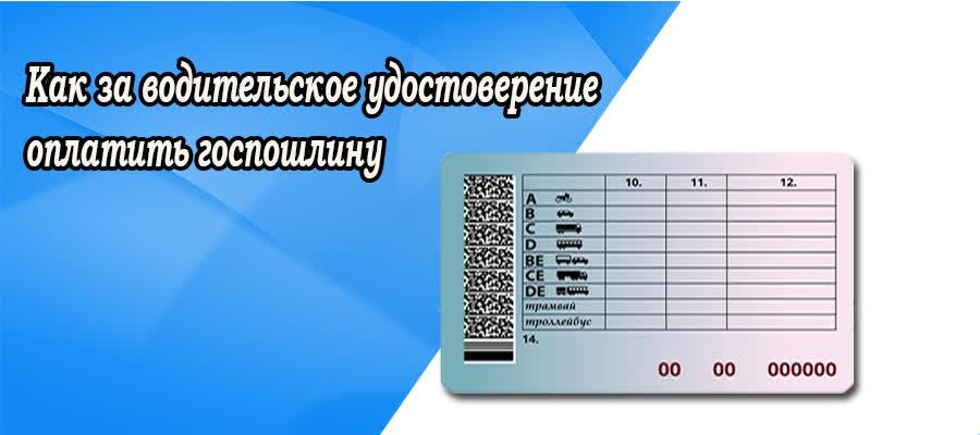 Как госпошлину оплатить за водительское удостоверение