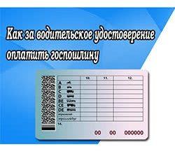 Как за водительское удостоверение оплатить госпошлину